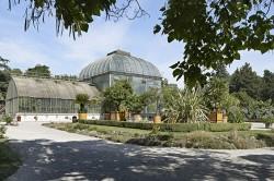 Photo de Conservatoire et Jardin botaniques (CJB)