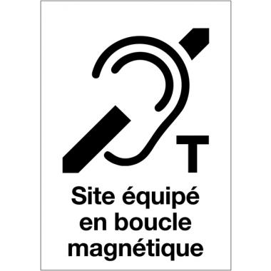 Affiche de Boucle magnétique dans certains lieux culturels