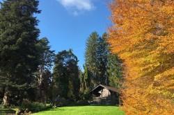 Photo de Jardin botanique alpin et Espace culturel Le Cairn